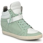 Sneaker High Kennel + Schmenger SOHO BRIGHT