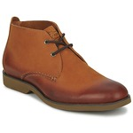 Stiefel Sperry Top-Sider BOAT OXFORD CHUKKA BOOT