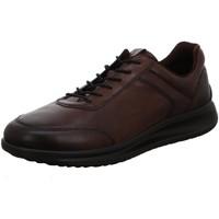 Schuhe Herren Derby-Schuhe & Richelieu Ecco Schnuerschuhe 207124/01482 braun