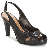 Schuhe Damen Sandalen / Sandaletten Betty London LIMONADE Schwarz