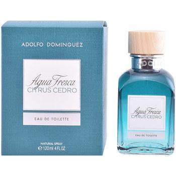 Beauty Eau de toilette  Adolfo Dominguez Agua Fresca Citrus Cedro Edt Zerstäuber  120 ml