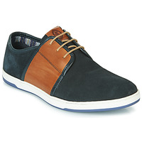 Schuhe Herren Sneaker Low Base London JIVE Blau / Camel