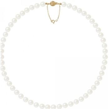 Uhren & Schmuck Damen Collier Blue Pearls BPS K031 W Multicolor