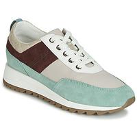 Schuhe Damen Sneaker Low Geox D TABELYA Beige / Braun / Grün