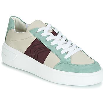 Schuhe Damen Sneaker Low Geox D OTTAYA Creme / Grün