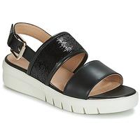 Schuhe Damen Sandalen / Sandaletten Geox D WIMBLEY SANDAL Schwarz