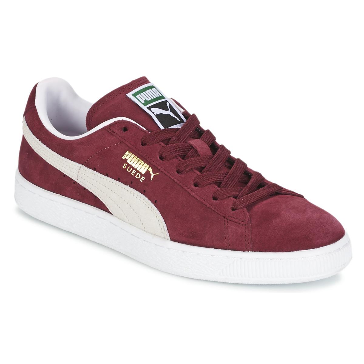 Puma SUEDE CLASSIC Rot / Weiss - Kostenloser Versand bei Spartoode ! - Schuhe Sneaker Low  67,99 €