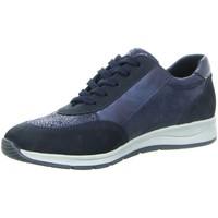 Schuhe Damen Arbeitsschuhe Longo Schnuerschuhe Beq.bis25mm-Abs/Keil 1013144 blau
