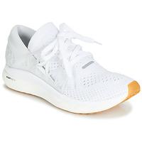 Schuhe Herren Fitness / Training Reebok Sport FLOWTRIDE RU Weiss