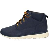 Schuhe Jungen Boots Timberland CA1V86 IRIS