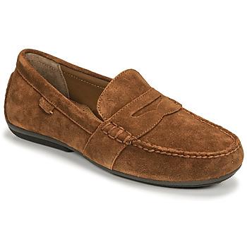 Schuhe Herren Slipper Polo Ralph Lauren REYNOLD Braun