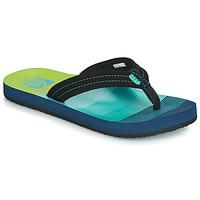 Schuhe Jungen Zehensandalen Reef KIDS AHI Blau / Grün