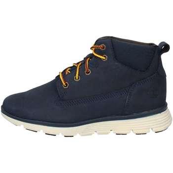 Schuhe Jungen Boots Timberland CA1SN8 IRIS