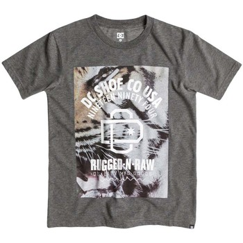 Kleidung Jungen T-Shirts DC Shoes Raw Tiga