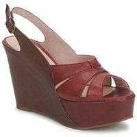 Schuhe Damen Sandalen / Sandaletten Paco Gil RITMO SELV Camel / Bordeaux