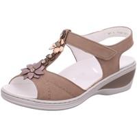 Schuhe Damen Sandalen / Sandaletten Ara Sandaletten taupe-bronce-rosé 12-39002-05 Colmar beige