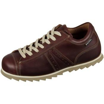 Schuhe Damen Sneaker Low Snipe Schnuerschuhe 42285E 0001 braun