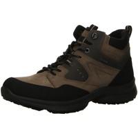 Schuhe Herren Boots Ara Schnuerschuhe WILLIAM 1124204-04 braun