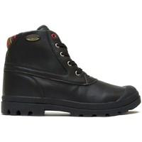 Schuhe Damen Boots Little Marcel Bottines Presto H14IGC010 Noir Schwarz