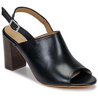 Schuhe Damen Sandalen / Sandaletten Betty London JIKOTEGE Schwarz
