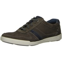 Schuhe Herren Sneaker Low Ara Schnuerschuhe Torben 16802-25 grau