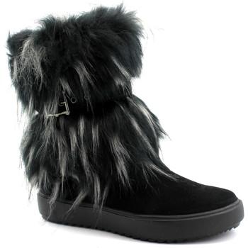 Schuhe Damen Low Boots Antarctica ANT-CCC-5508-NE Nero