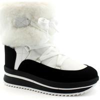 Schuhe Damen Low Boots Antarctica ANT-CCC-5855-BI Bianco