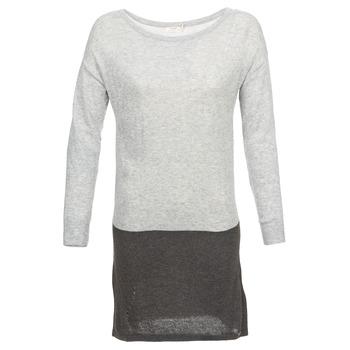 Kleidung Damen Kurze Kleider DDP EMMI Schwarz / Grau