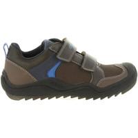Schuhe Kinder Multisportschuhe Geox J8434A 05054 J ARTACH Marr?n