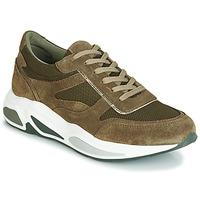 Schuhe Damen Sneaker Low André ROLLO Grün