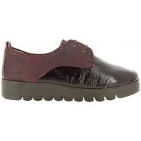 Schuhe Damen Derby-Schuhe 24 Hrs 24 Hrs mod.21043 Rot