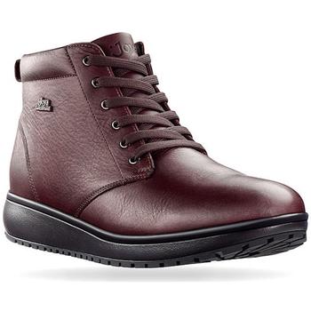 Schuhe Damen Boots Joya Wilma Wine 534