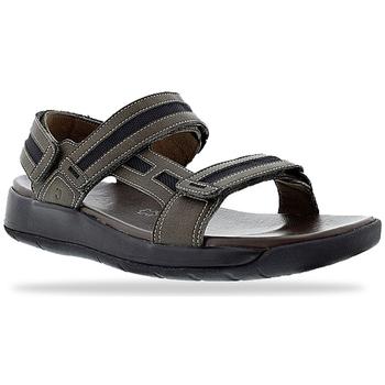 Schuhe Herren Sportliche Sandalen Joya Capri 16 Brown 534