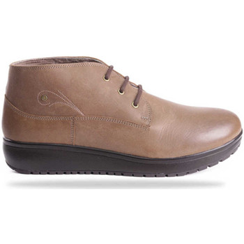 Schuhe Damen Boots Joya London Walnut Air 534