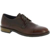 Schuhe Herren Derby-Schuhe Raymont 625 BROWN marrone