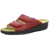Schuhe Damen Pantoffel Rohde Pantoletten Soltau -F 1/2- 1940.43 rot