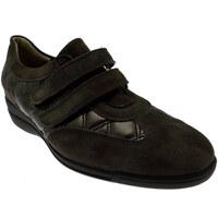 Schuhe Damen Sneaker Low Calzaturificio Loren LOL8075m marrone