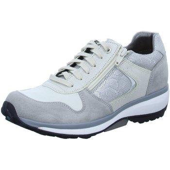 Schuhe Damen Sneaker Low Xsensible Schnuerschuhe Jersey 30042.3.845 grau
