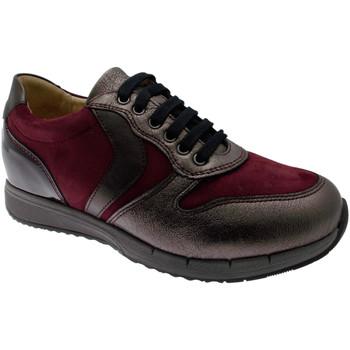 Schuhe Damen Sneaker Low Calzaturificio Loren LOC3818bo tortora