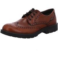Schuhe Herren Derby-Schuhe & Richelieu Igi&co Business Schnürer 86753 braun