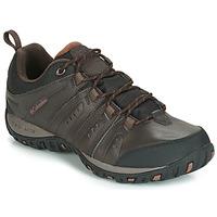 Schuhe Herren Multisportschuhe Columbia WOODBURN II WATERPROOF Braun