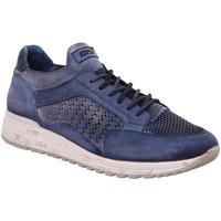 Schuhe Herren Sneaker Low Cetti Schnuerschuhe C1180-V19 blau