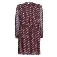 Kleidung Damen Kurze Kleider Betty London LILY Bordeaux