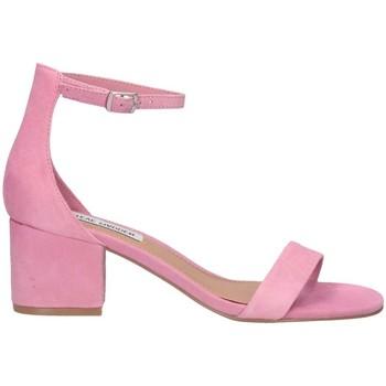Schuhe Damen Sandalen / Sandaletten Steve Madden SMSIRENEE-MILPINK Sandalen Frau rosa rosa