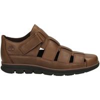 Schuhe Herren Sandalen / Sandaletten Timberland BRADSTREET FISHERMAN soil-marrone