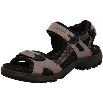 Schuhe Herren Wanderschuhe Ecco Offene 069564-57182-Offroad grau
