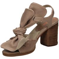 Schuhe Damen Sandalen / Sandaletten Fabbrica Dei Colli CLOUD 03126-taupe