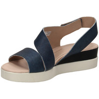 Schuhe Damen Sandalen / Sandaletten Ecco TOUCH SANDAL blumo-blu