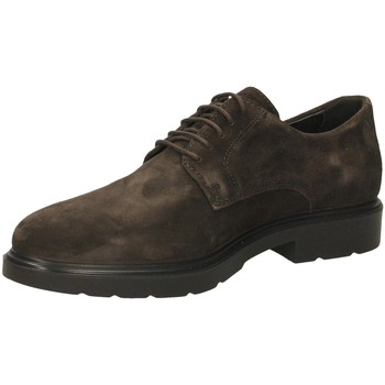 Schuhe Herren Derby-Schuhe IgI&CO UGL 21006 caffe-caffe_SS_