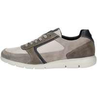 Schuhe Herren Sneaker Low Impronte IM91085A GRAY